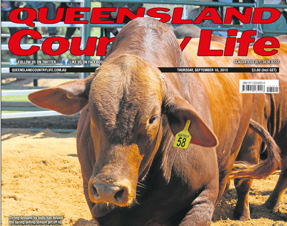 QCL-front-cover-10-09-15-